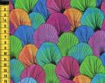 Medinilla - Bunte Blätter