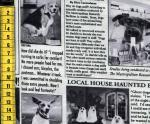 The Canine Courier - Hundezeitung